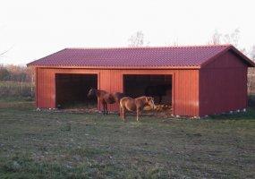 Hästar i liggstall
